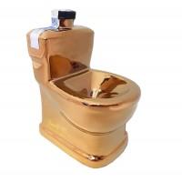 Бутилка Златна тоалетна, водка 500мл