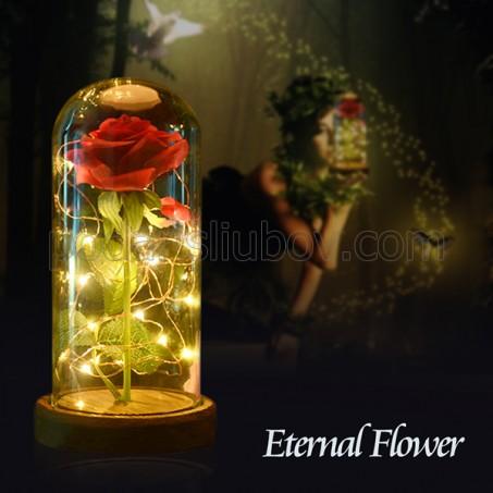 """Уникална вечна роза в стъкленица """"Красавицата и Звяра"""""""