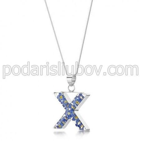 Медальон - Буква X, Незабравки