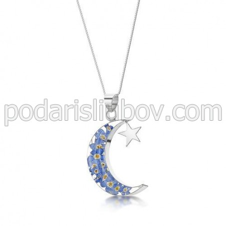 Сребърен медальон, Луна и Звезда, Незабравка