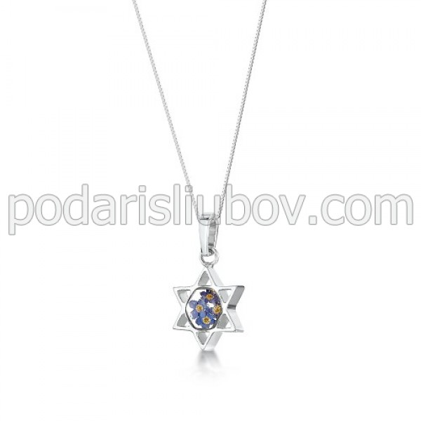 Сребърен медальон, Звездата на Давид, Незабравка