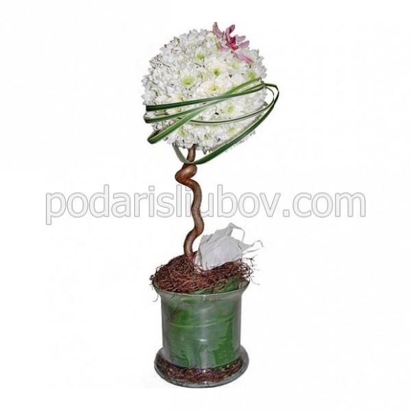 """Дръвче от цветя """"Дървото на успеха"""""""