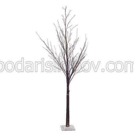 Коледно дърво
