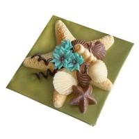 Шоколадова звезда с раковини