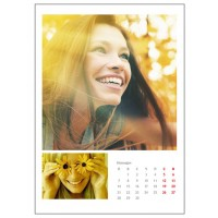 Календар - стенен, 31*43см, 12-листен, с 24 снимки, + корица