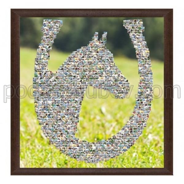 Колаж Кон в подкова за късмет, с Ваши снимки, различни размери